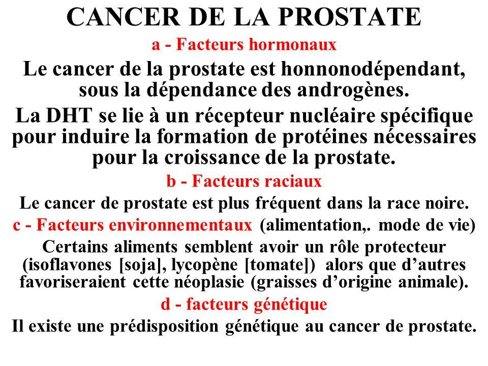 CANCER DE LA PROSTATE a - Facteurs hormonaux. Le cancer de la prostate est honnonodépendant, sous la dépendance des androgènes.