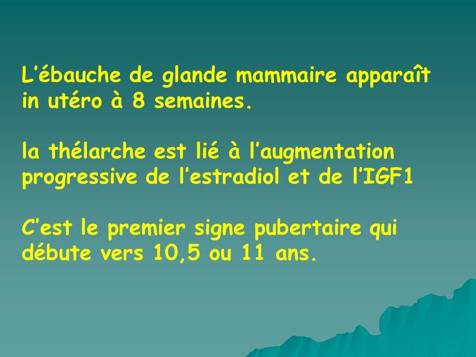 L'ébauche de glande mammaire apparaît in utéro à 8 semaines.