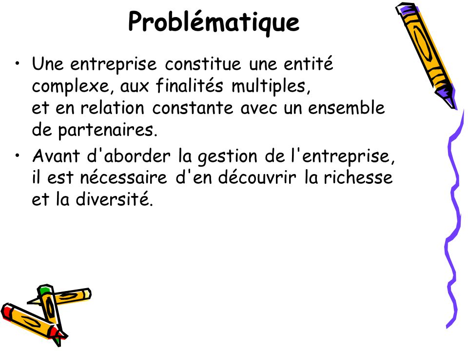 Problématique Une entreprise constitue une entité complexe, aux finalités multiples, et en relation constante avec un ensemble de partenaires.