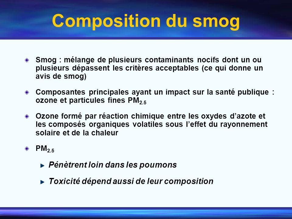 Composition du smog Pénètrent loin dans les poumons