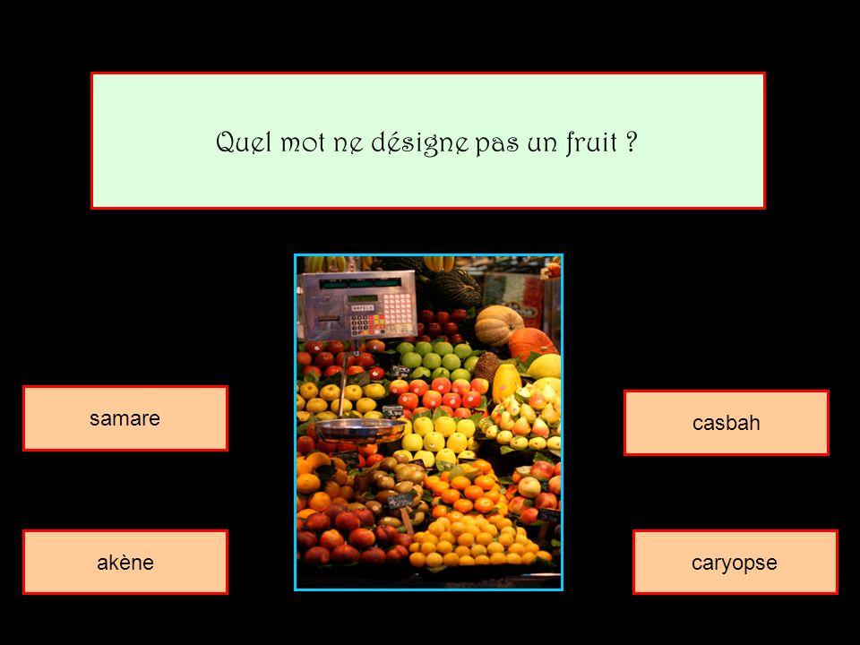 Quel mot ne désigne pas un fruit