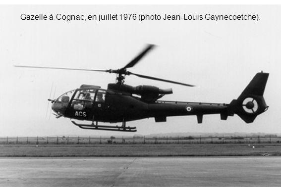 Gazelle à Cognac, en juillet 1976 (photo Jean-Louis Gaynecoetche).