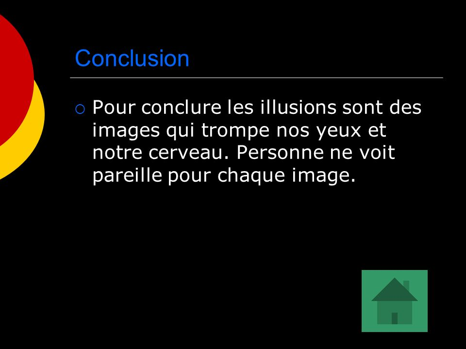 Conclusion Pour conclure les illusions sont des images qui trompe nos yeux et notre cerveau.