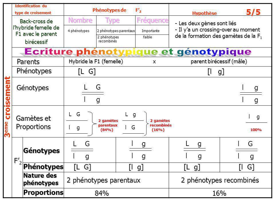 Ecriture phénotypique et génotypique