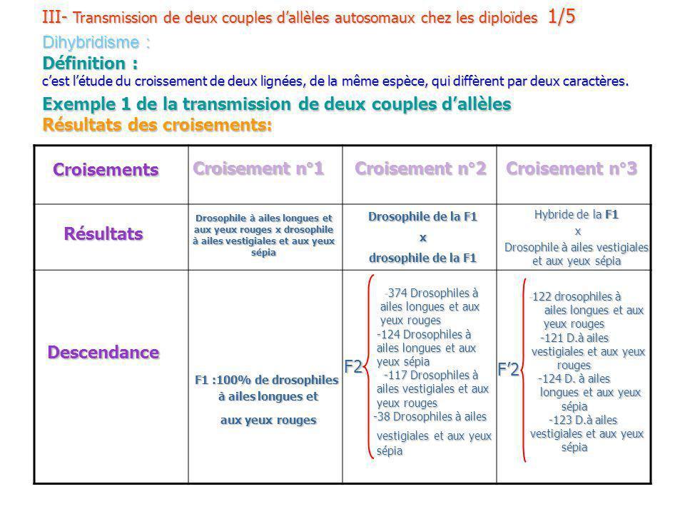 III- Transmission de deux couples d'allèles autosomaux chez les diploïdes 1/5