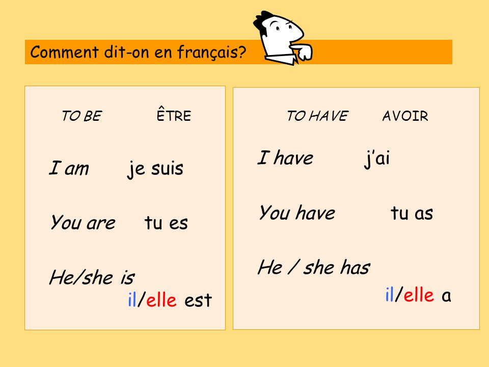 I am je suis You have tu as You are tu es He / she has
