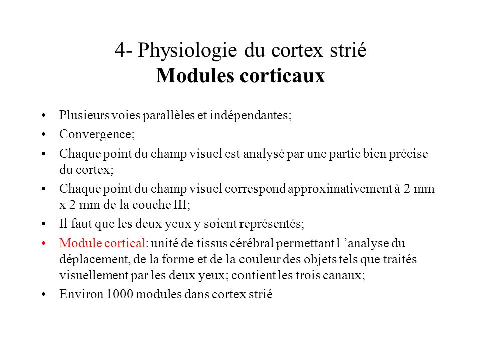 4- Physiologie du cortex strié Modules corticaux