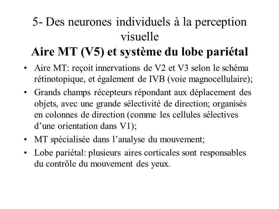 5- Des neurones individuels à la perception visuelle Aire MT (V5) et système du lobe pariétal