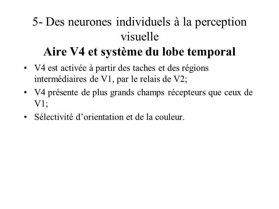 5- Des neurones individuels à la perception visuelle Aire V4 et système du lobe temporal
