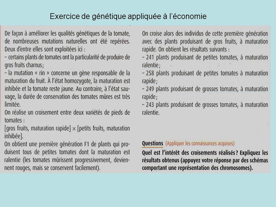 Exercice de génétique appliquée à l'économie