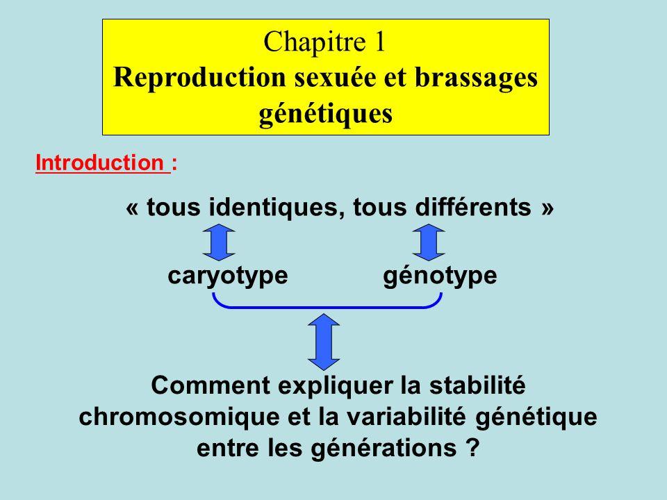 Reproduction sexuée et brassages génétiques