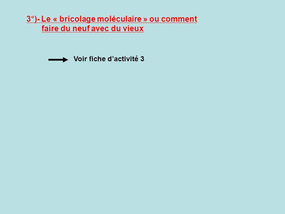 3°)- Le « bricolage moléculaire » ou comment