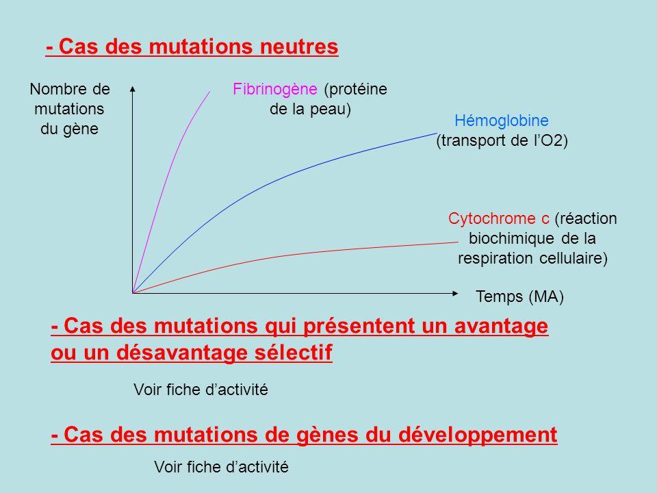 - Cas des mutations neutres