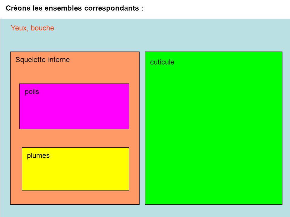 Créons les ensembles correspondants :