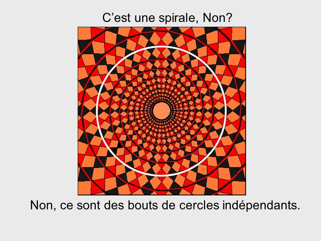 C'est une spirale, Non Non, ce sont des bouts de cercles indépendants.