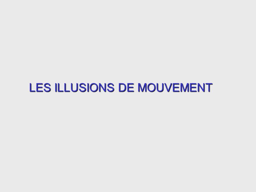 LES ILLUSIONS DE MOUVEMENT