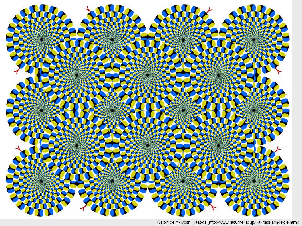 Illusion de Akiyoshi Kitaoka (http://www. ritsumei. ac
