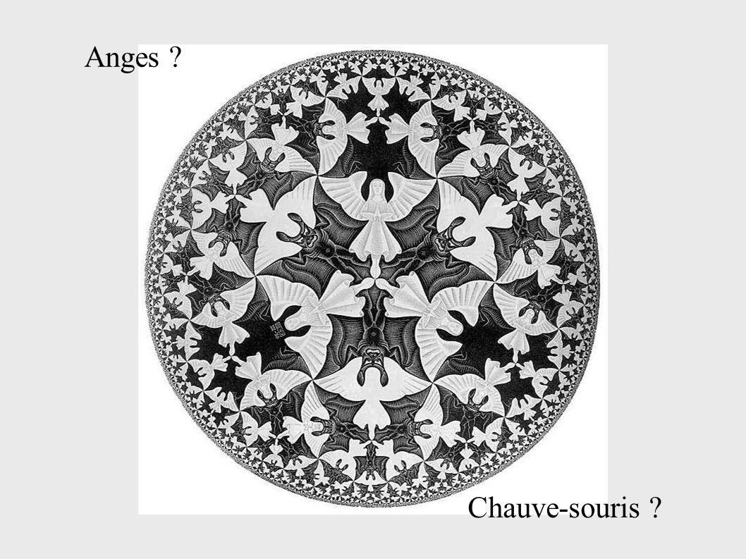 Anges Chauve-souris
