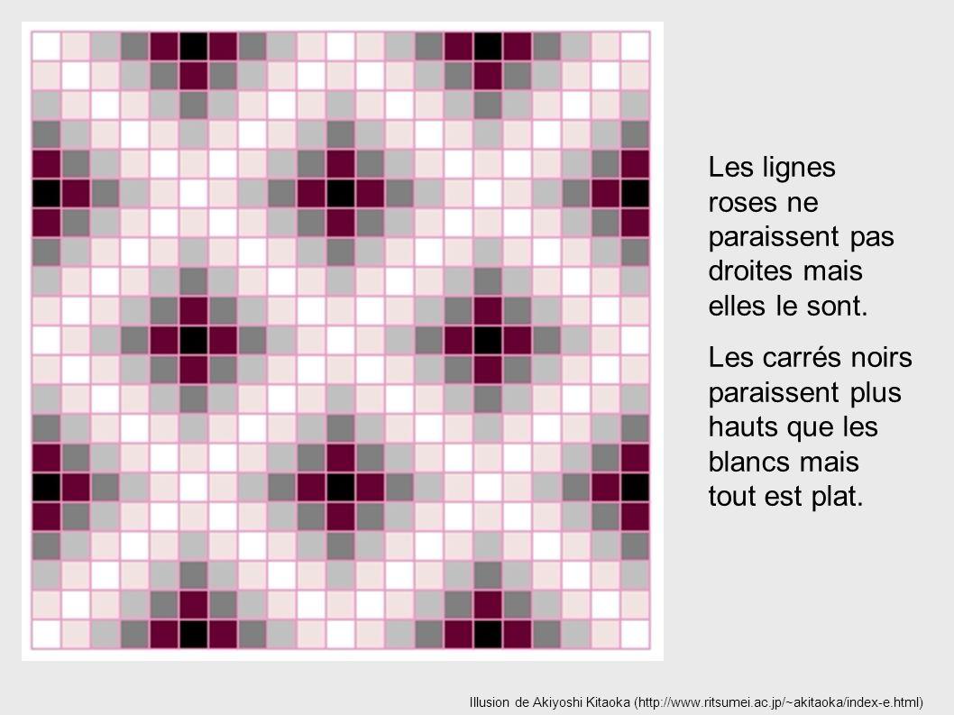 Les lignes roses ne paraissent pas droites mais elles le sont.