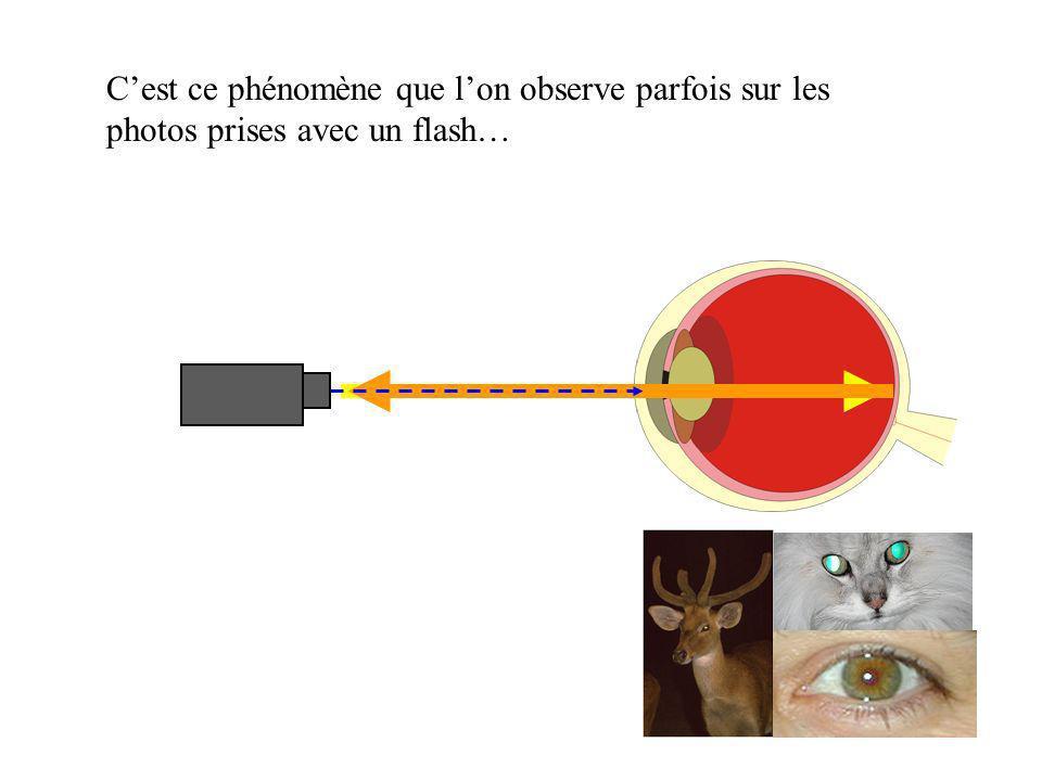 C'est ce phénomène que l'on observe parfois sur les photos prises avec un flash…