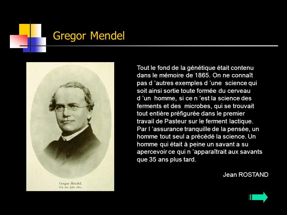 Gregor Mendel Tout le fond de la génétique était contenu