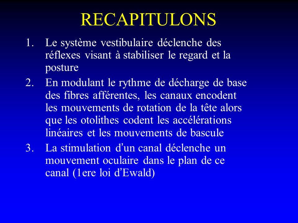 RECAPITULONS Le système vestibulaire déclenche des réflexes visant à stabiliser le regard et la posture.