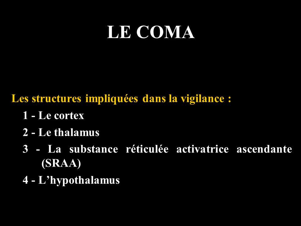 LE COMA Les structures impliquées dans la vigilance : 1 - Le cortex