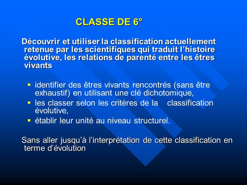 CLASSE DE 6°