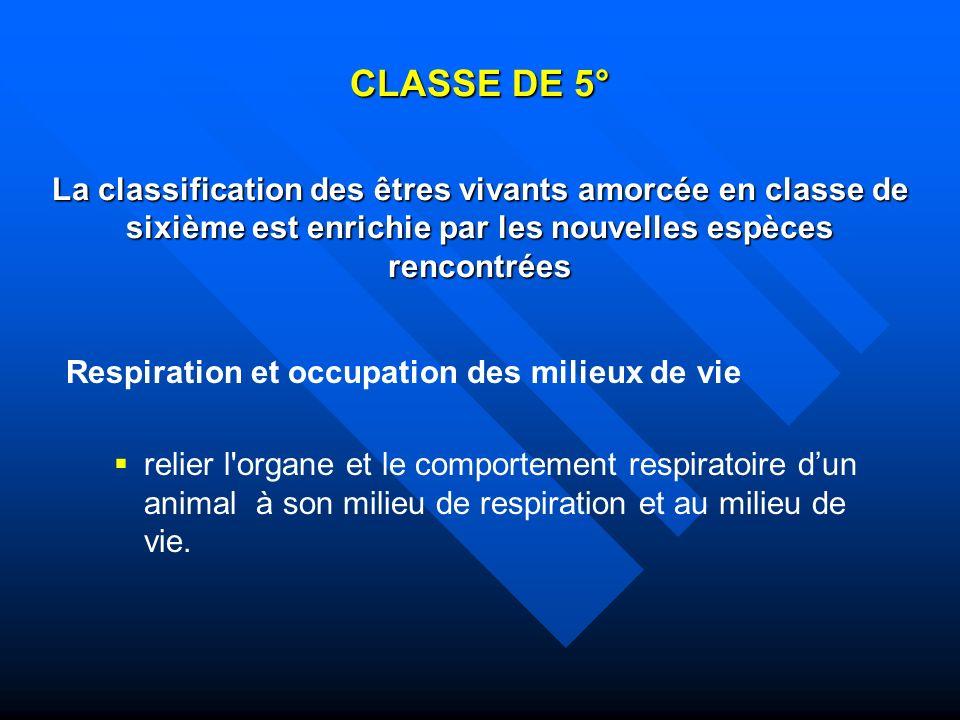 CLASSE DE 5° La classification des êtres vivants amorcée en classe de sixième est enrichie par les nouvelles espèces rencontrées