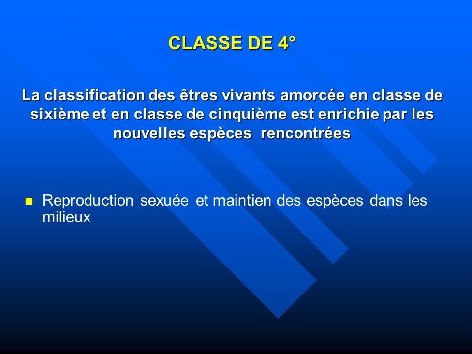 CLASSE DE 4° La classification des êtres vivants amorcée en classe de sixième et en classe de cinquième est enrichie par les nouvelles espèces rencontrées