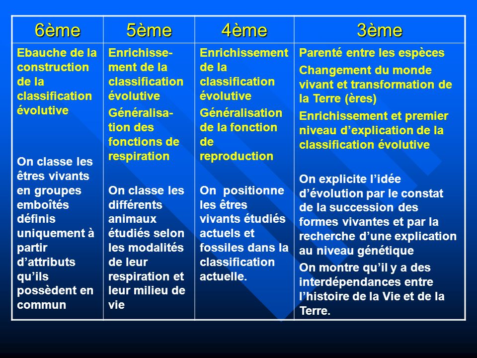 6ème 5ème. 4ème. 3ème. Ebauche de la construction de la classification évolutive.