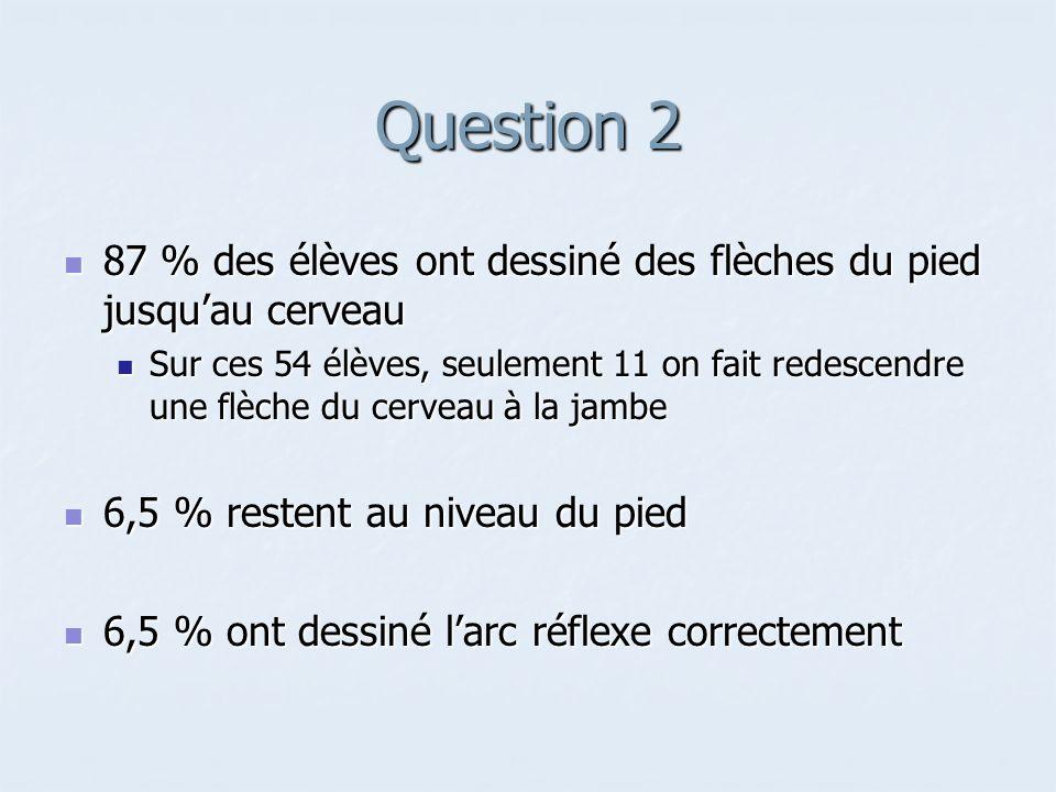 Question 2 87 % des élèves ont dessiné des flèches du pied jusqu'au cerveau.