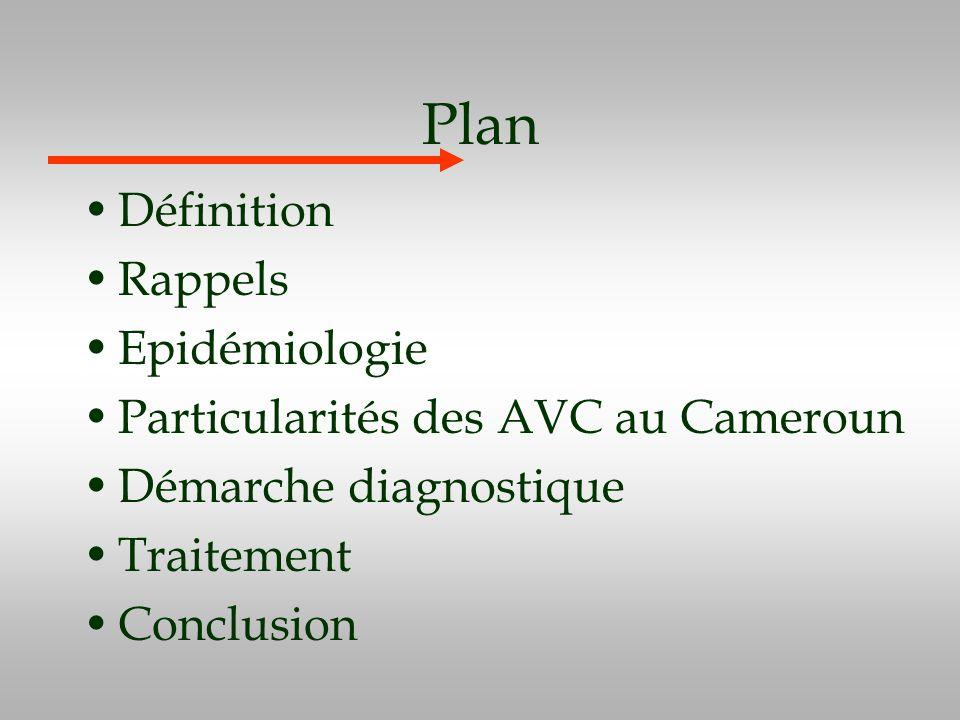 Plan Définition Rappels Epidémiologie