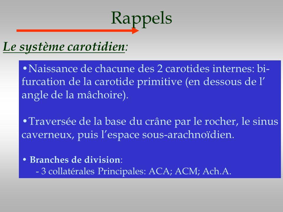 Rappels Le système carotidien: