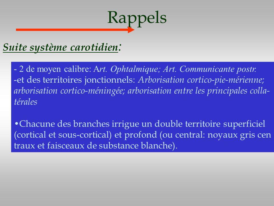 Rappels Suite système carotidien:
