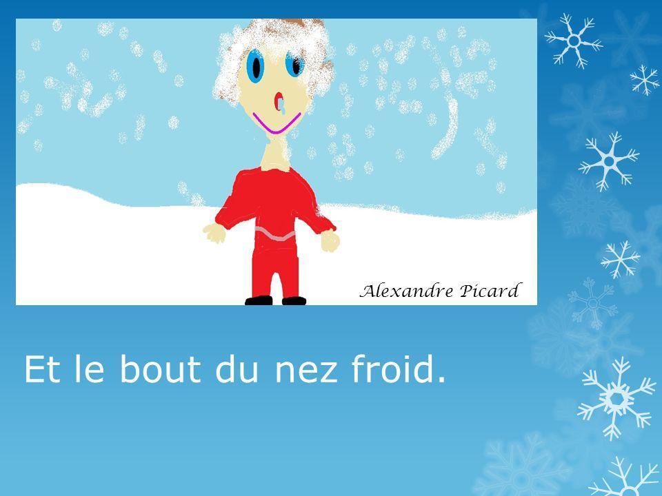 Alexandre Picard Et le bout du nez froid.