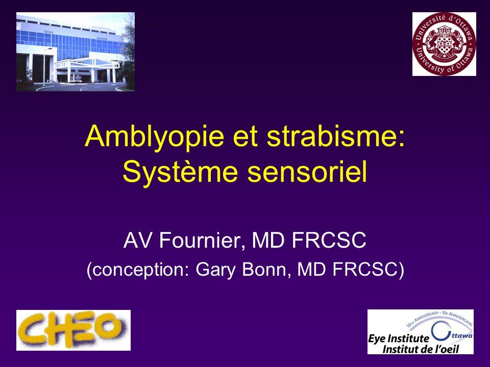 Amblyopie et strabisme: Système sensoriel
