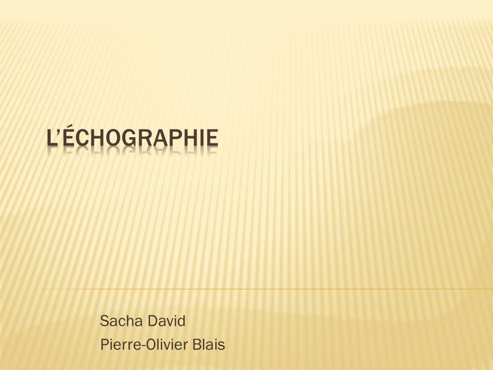 Sacha David Pierre-Olivier Blais