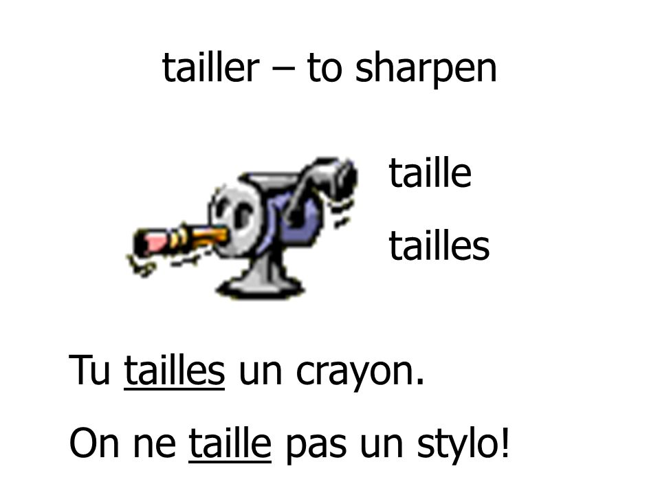 tailler – to sharpen taille tailles Tu tailles un crayon. On ne taille pas un stylo!
