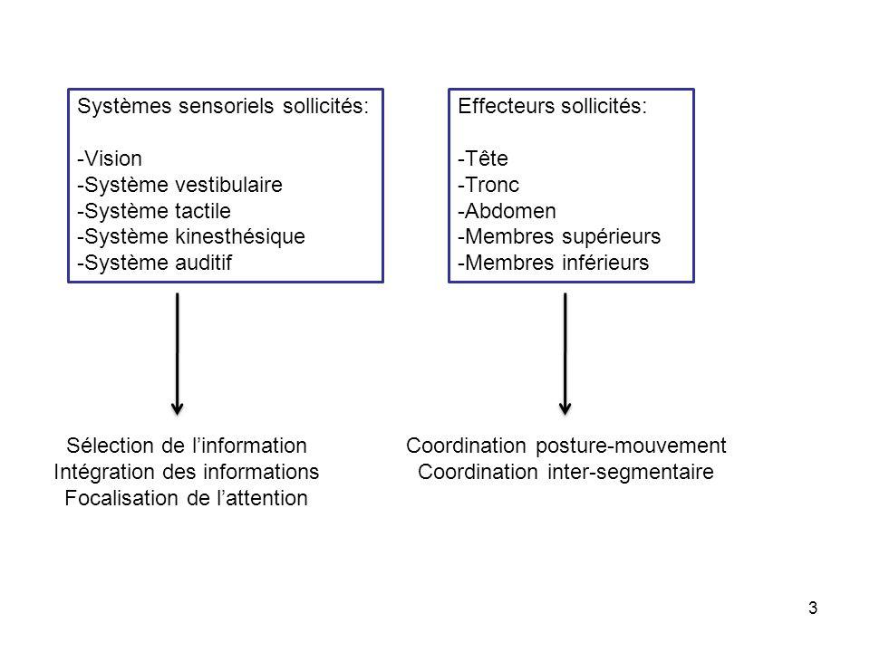 Systèmes sensoriels sollicités: Vision Système vestibulaire