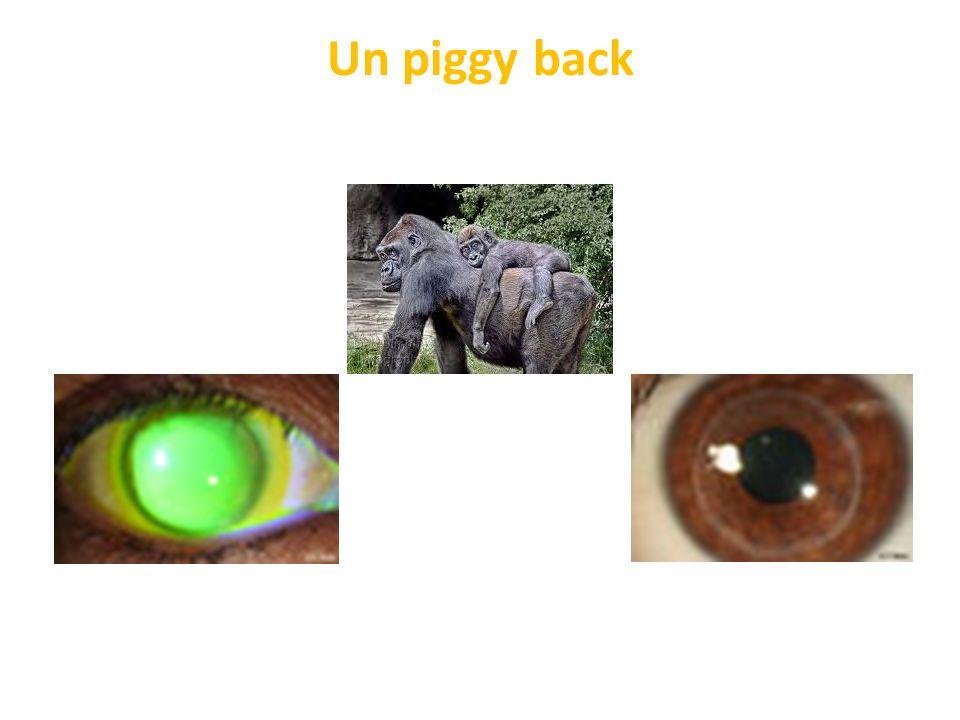 Un piggy back