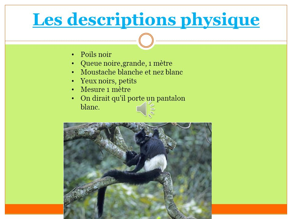 Les descriptions physique