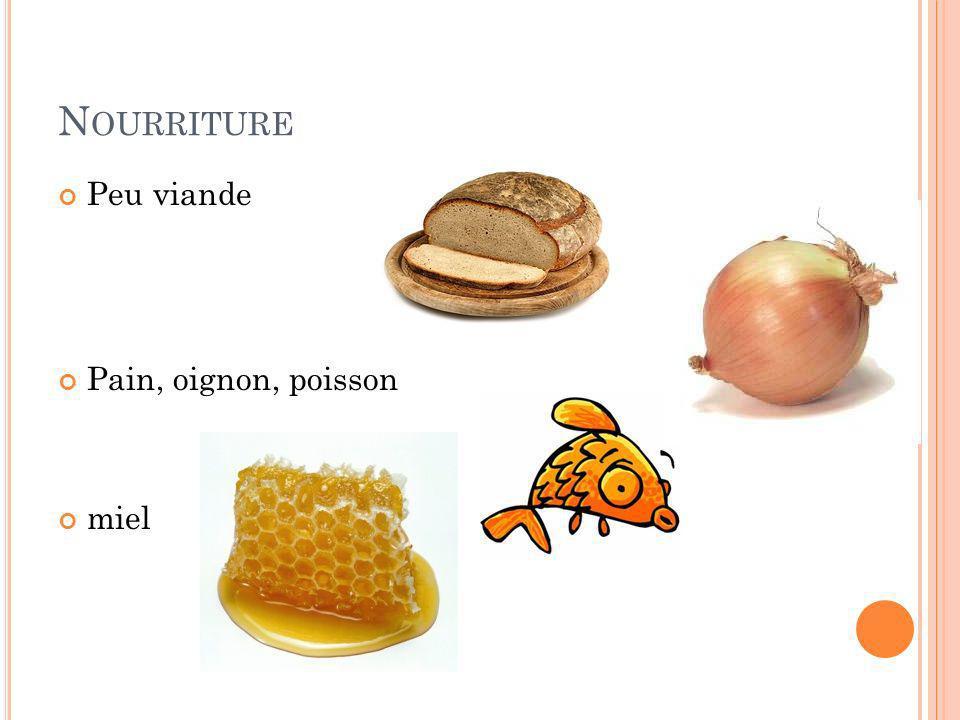 Nourriture Peu viande Pain, oignon, poisson miel