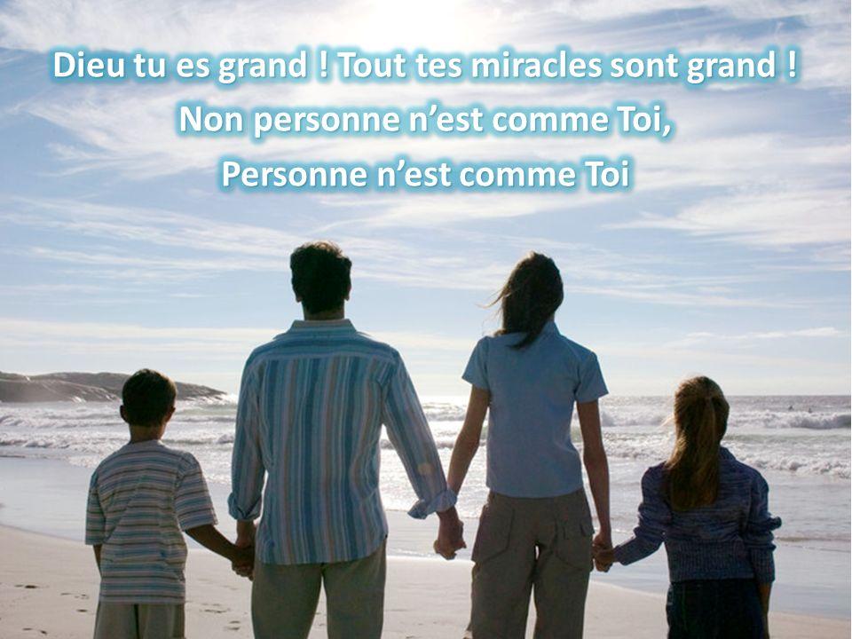 Dieu tu es grand. Tout tes miracles sont grand