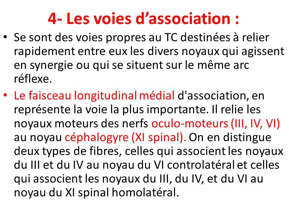 4- Les voies d'association :