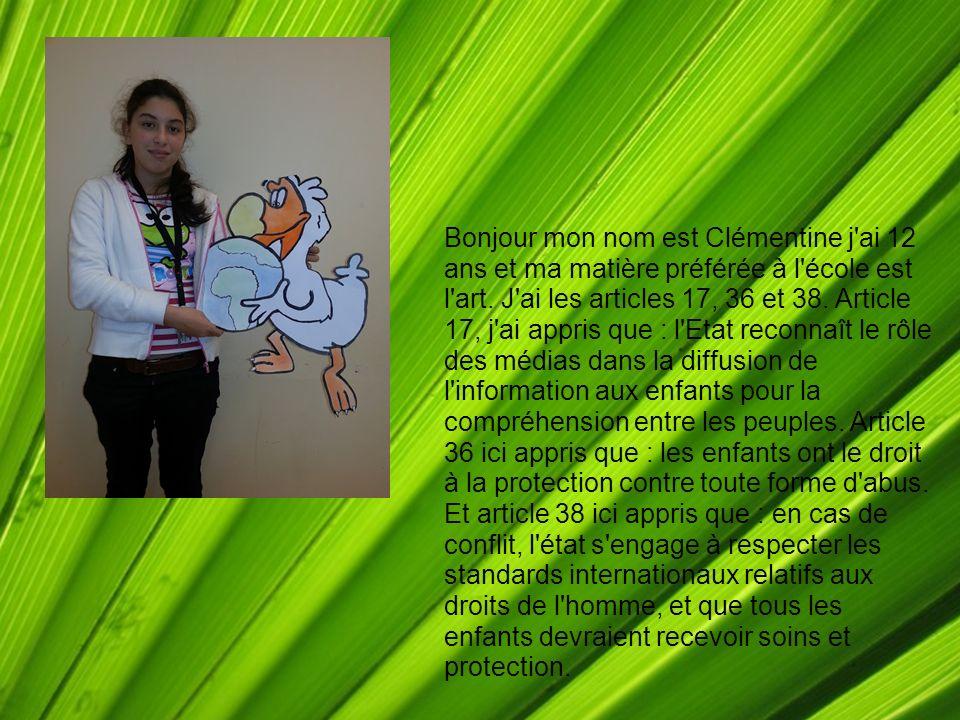 Bonjour mon nom est Clémentine j ai 12 ans et ma matière préférée à l école est l art.