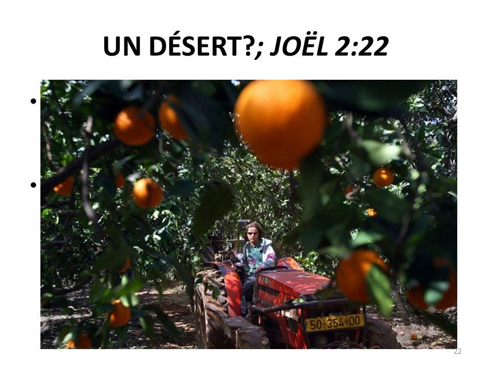 UN DÉSERT ; JOËL 2:22 21 Terre, ne crains point ; égaye–toi et réjouis–toi ! Car l'Éternel a fait de grandes choses.