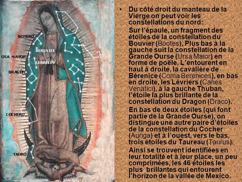 Du côté droit du manteau de la Vierge on peut voir les constellations du nord: