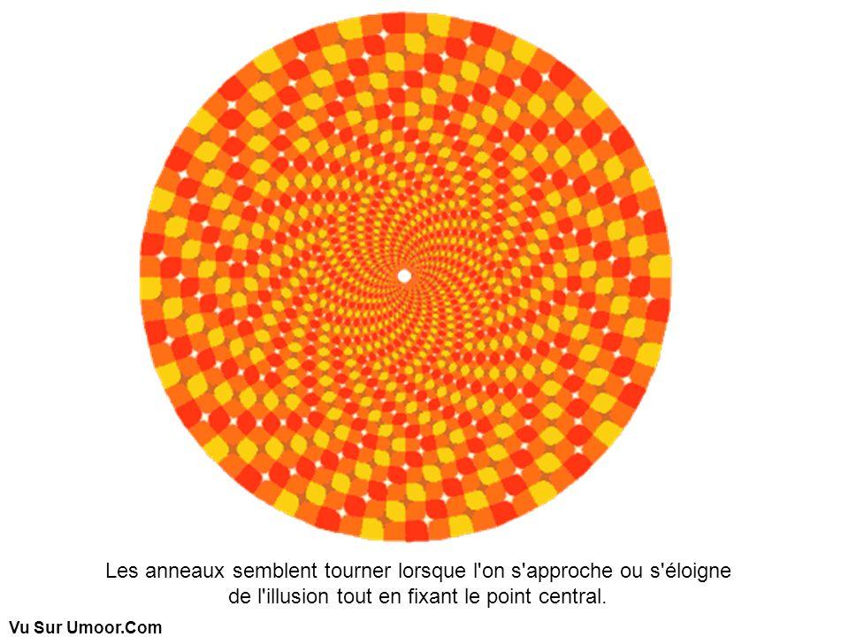 Les anneaux semblent tourner lorsque l on s approche ou s éloigne de l illusion tout en fixant le point central.
