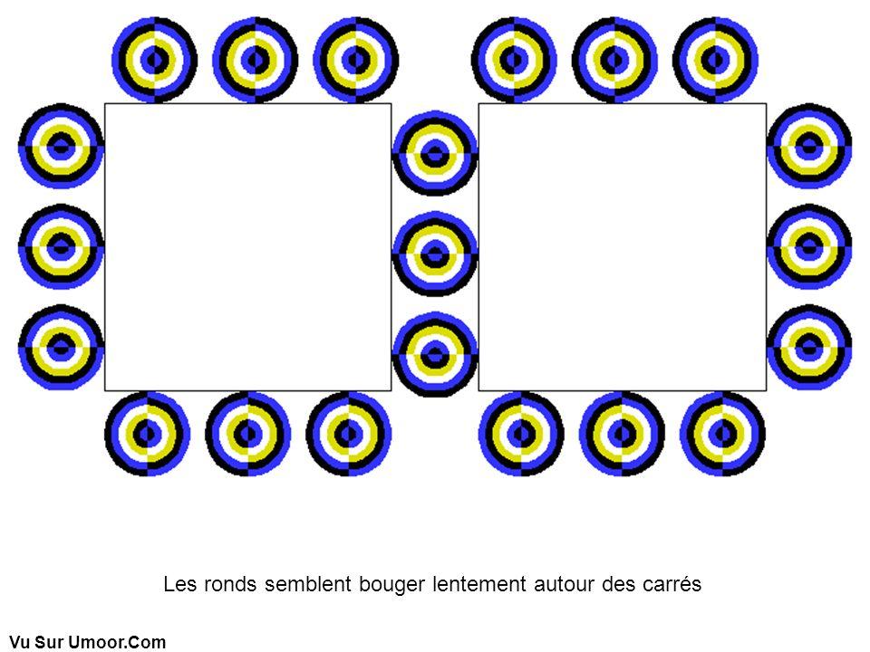 Les ronds semblent bouger lentement autour des carrés